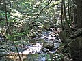 Adams Brook (near East Dover, Green Mountains, Vermont, USA) 6 (49439053007).jpg