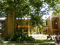 Administration Building, Naropa University.jpg
