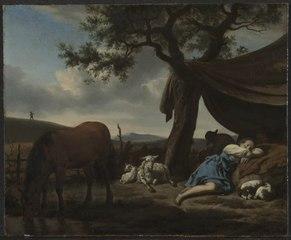 Sleeping Shepherds