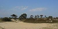 Aekingerzand Nationaal Park Drents-Friese Wold4.jpg