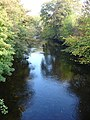 Afon Efyrnwy, Pontrobert - geograph.org.uk - 591837.jpg