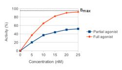 Mecanismo de acción del propranolol en el diagnóstico de hipertensión portal