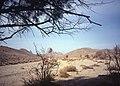 Ahaggar Mountains 1981 30.jpg