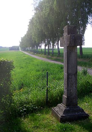Francis Alexander, Prince of Nassau-Hadamar - Memorial cross for Francis Alexander on the ancient road from Hadamar to Limburg an der Lahn