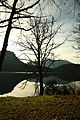 Altausseer See 78873 2014-11-15.JPG