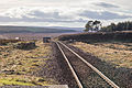 Altnabreac Station Tracks (16511781106).jpg