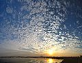 Altocumulus stratiformis - Clouds - Salt Lake City - Kolkata 2013-11-16 0620-0623.jpg