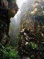 Ambiance , faille nord de la Soufrière Guadeloupe.jpg