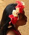 Amerindian girl from panama.jpg