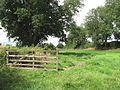 An empty pasture - geograph.org.uk - 1405684.jpg
