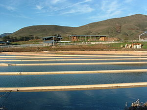 Anaerobic lagoon & generators at the Cal Poly Dairy, United States 2003