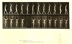 Animal locomotion. Plate 34 (Boston Public Library).jpg
