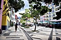 Another square in Funchal, Madeira (48806700923).jpg