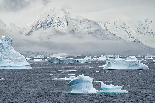 Antarktický ekosystém