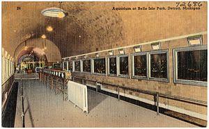Belle Isle Aquarium - Postcard c.1940s