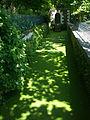 Arboretum Gaston Allard (2).jpg
