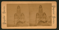 Arizona Indians, from Robert N. Dennis collection of stereoscopic views.png