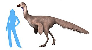 <i>Arkansaurus</i> genus of reptiles (fossil)