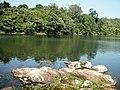 Asurankundu Reservoir - panoramio (2).jpg