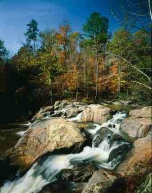 Auburn, Alabama - A creek flowing through Chewacla State Park in Auburn.
