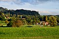 Auslikon - Robenhauser Riet 2012-10-13 17-28-57.JPG