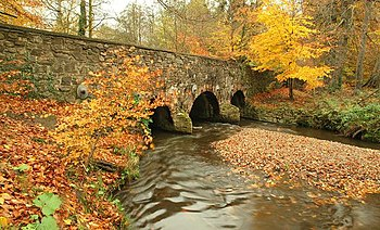 English: Autumn at Minnowburn 2008 (10) The Mi...