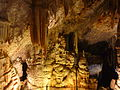 Avshalom Cave (Sorek Cave) - Stalactite Cave Nature Reserve P1120725 (6993456636).jpg