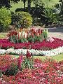 BCBG Ornamental Gardens 02.JPG
