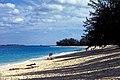 Bahamas 1988 (270 ) Paradise Island Cabbage Beach (23474298423).jpg