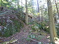 Bartholomew Cobble Trail.JPG
