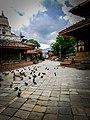 Basantapur Darbar Square During Lockdown.jpg