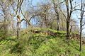 Battery B Site, Battle of Helena.JPG