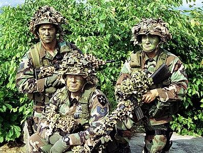 Battle Dress Uniform01b.jpg