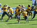 Bears on offense at UCLA at Cal 2010-10-09 22.JPG