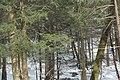 Beaverdale Region - panoramio (10).jpg