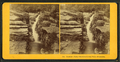 Beecher's Falls, Crawford Notch, White Mountains, from Robert N. Dennis collection of stereoscopic views.png