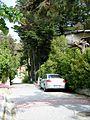 Beylikdüzü Sahil Bölgesinde Gürpınar Mahallesinde Bir Sokak, Mayıs 2014.JPG