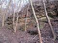 Bezejmenný potok mezi Bohnicemi a Podhořím a jeho okolí (22).jpg