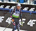 Biathlon European Championships 2017 Individual Men 0688.JPG