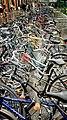 Bicycles - panoramio (2).jpg