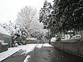 Bidbury Lane after the snowfall - geograph.org.uk - 752323.jpg