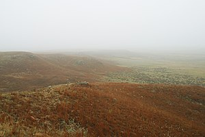 Big Basin Prairie Preserve - Image: Big Basin in Fog 2002