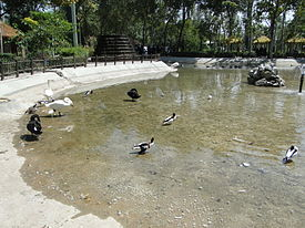 Birds Garden of Isfahan 15.JPG