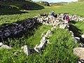 Blackhouse Ruins on Pabbay - geograph.org.uk - 734236.jpg