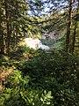 Blackwater Falls of Blackwater Falls State Park 07.jpg