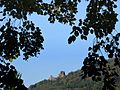 Blick zur Schlossruine Hohenbaden - panoramio.jpg