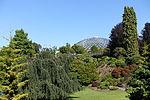 Bloedel Floral Conservatory, Queen Elizabeth Park - Vancouver, Canada - DSC07637.JPG