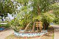 Boca Chica Chiriquí - 18108930065.jpg