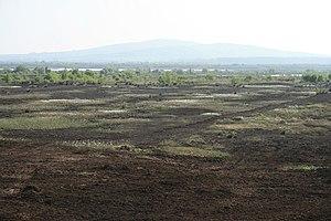 Bog of Allen - Bog of Allen - Croghan Hill, Offaly, in the distance