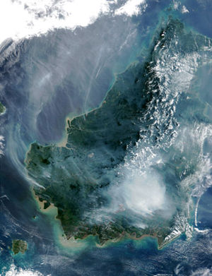 Satellite picture of the island of Borneo island on August 19, 2002, showing smoke from burning peat swamp forests.